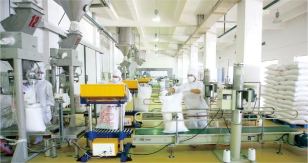 xanthan gum production