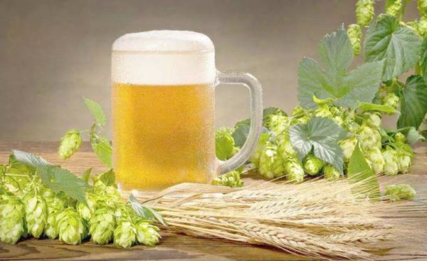 calcium chloride in beer production